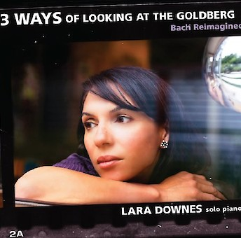 13 Ways of Looking at the Goldberg cover image